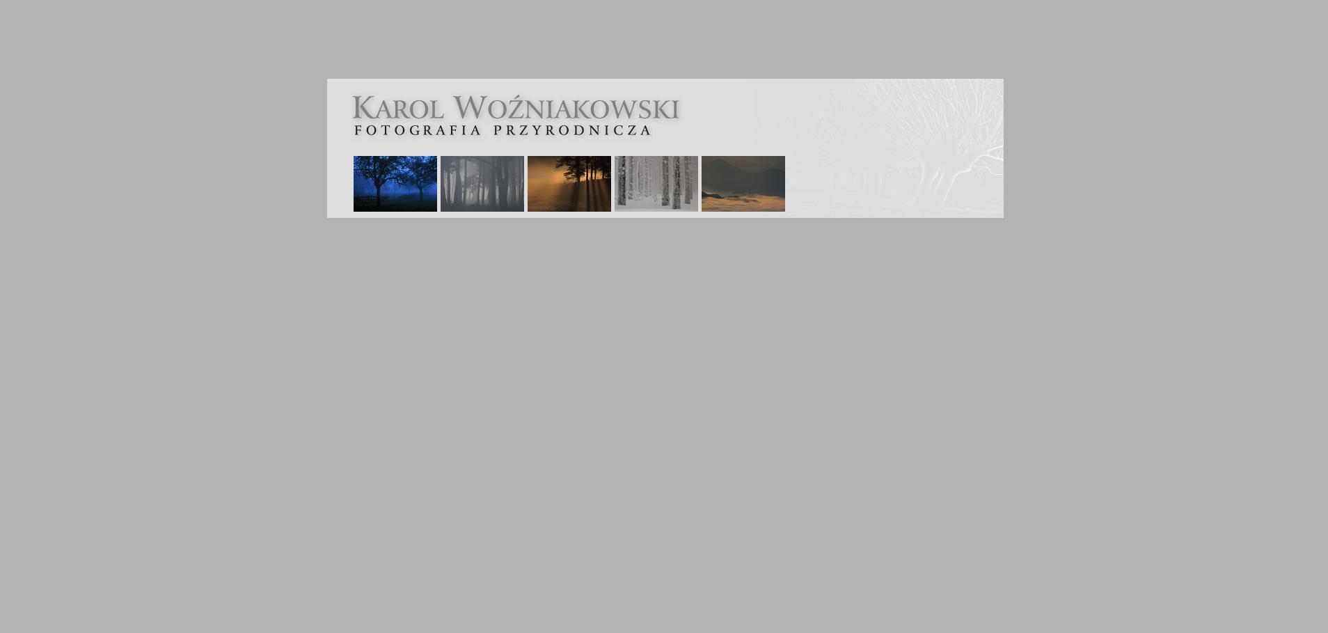 Karol Wożniakowski